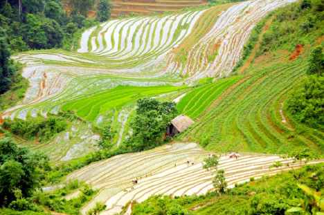 North Vietnam Tour – 6 Days